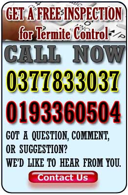 free termite inspection malaysia contact us